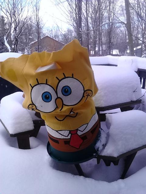 spongebob deck