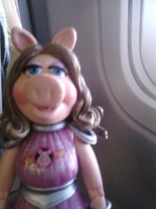 piggy plane 1
