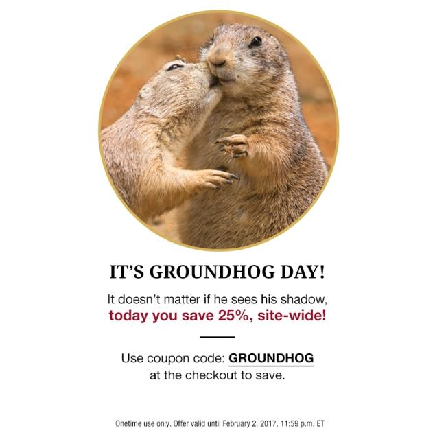 groundhog-sale
