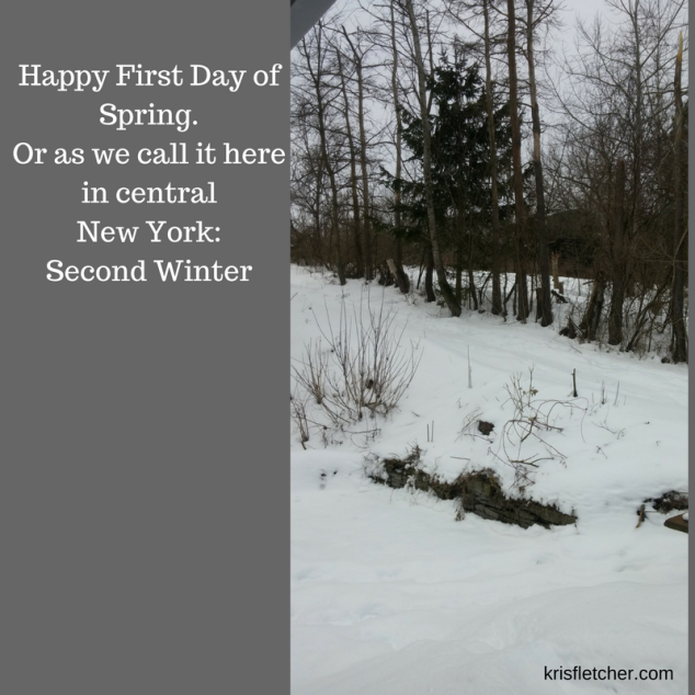 Happy First Day of Spring. Or as we call it here in central New York_ Second Winter